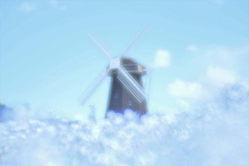 鶴見緑地公園 風車 ネモフィラ写真