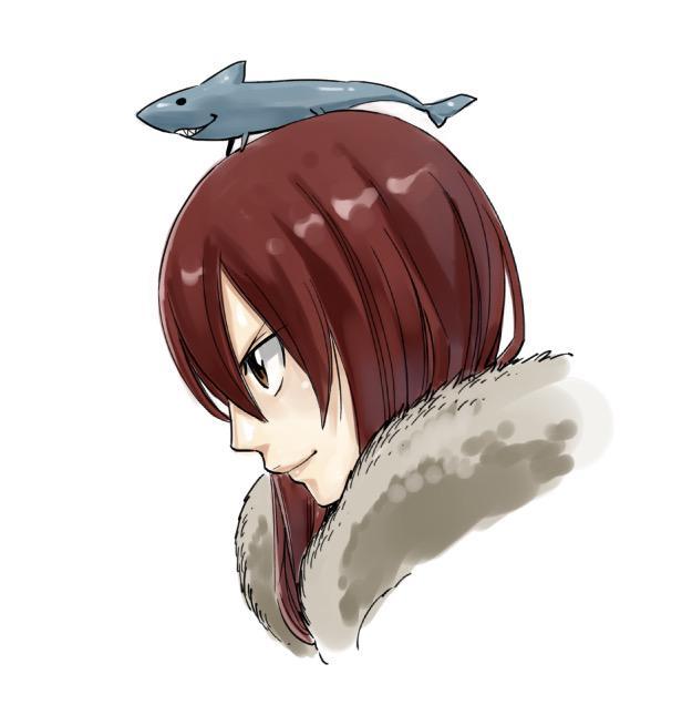 Hiro Mashima Fairy Tail Sketch 7