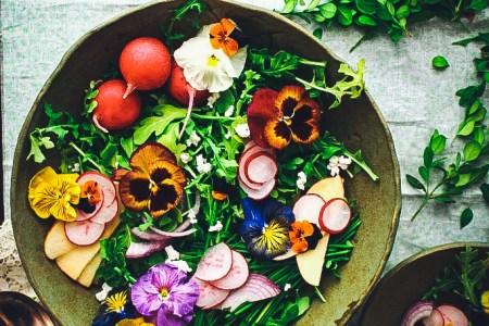 Wildflower and Arugula Salad with Farmer's Cheese and Orange Blossom Vinaigrette