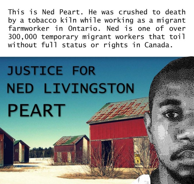 Ned Peart