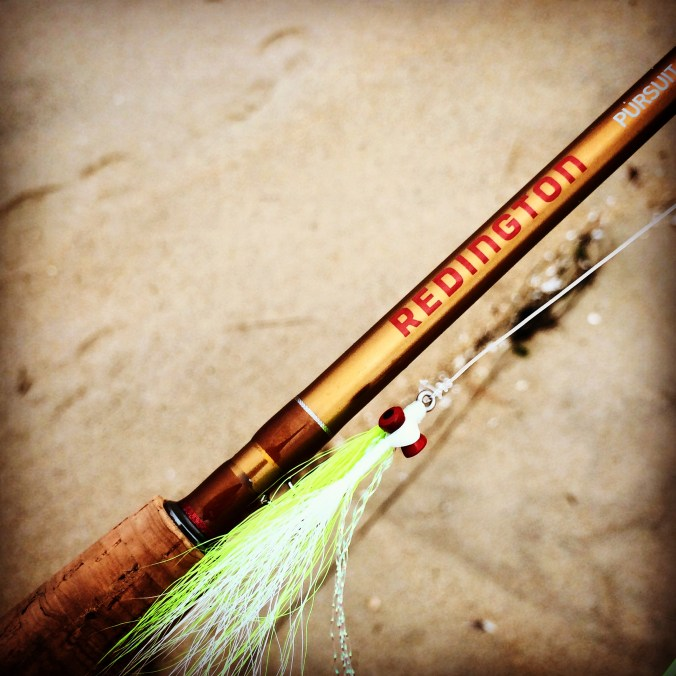 Fly Rod and Saltwater Fly