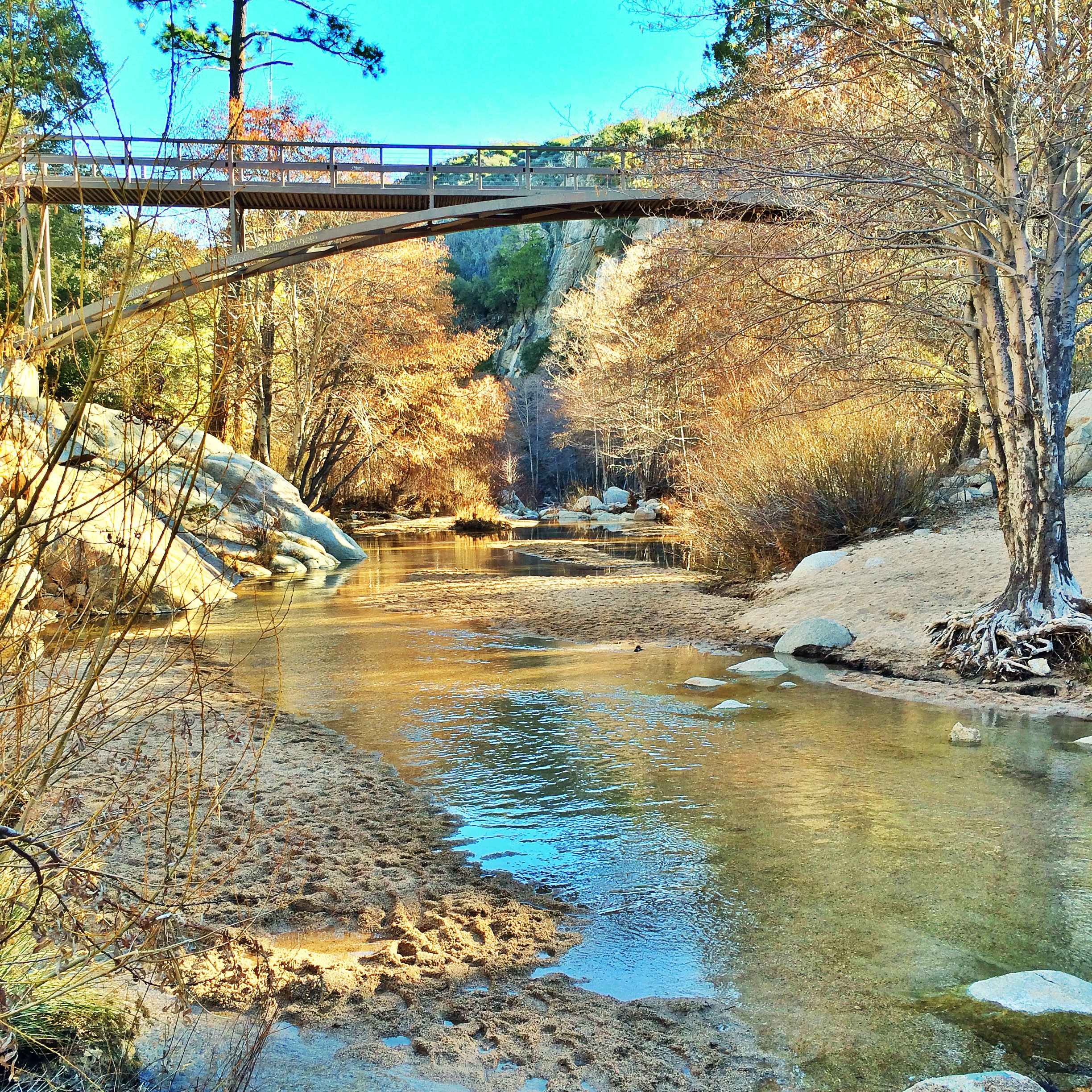 Escape the city fly fishing deep creek in southern for Trout fishing southern california
