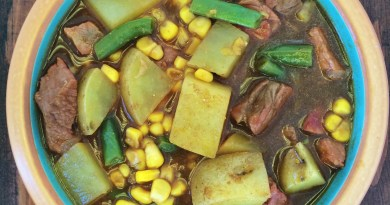 Venison Vegetable Soup