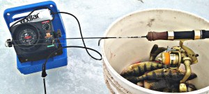 Ice Fishing for Yellow Perch