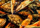 Steamed Maryland Blue Crab