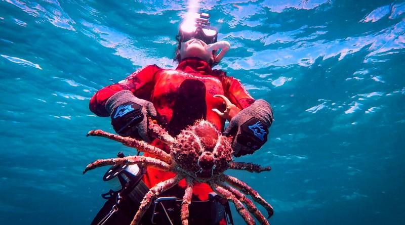 Podcast: Episode 212, When Lobster Bite Back