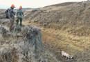Film: Adventures for Food Wyoming