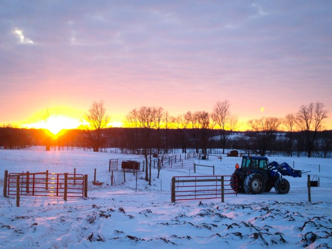 tractor-sunset