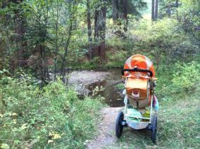 stroller_hike