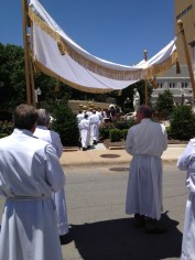 The canopy under which the Eucharist processes/