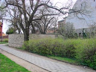 Bild: Reste der Schale an der Luisenpromenade.