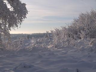 Bild: Schnee auf der Rabenskuppe bei Mansfeld.