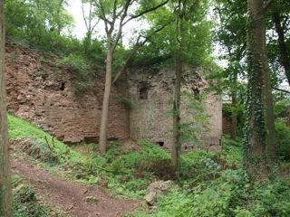 Bilder: Impressionen von den Resten der Festung Mansfeld.