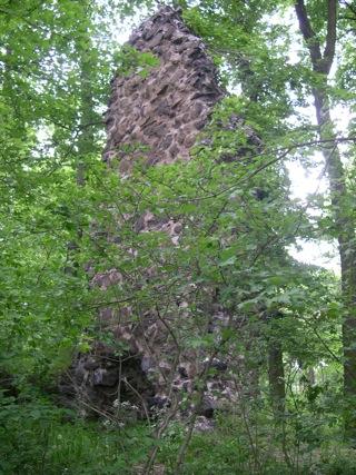Bild: Reste eines Turmes - die so genannte Wüste Kirche - am Rügegericht Volkmannrode.