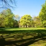 Bild: Eisleben - Im Stadtpark.