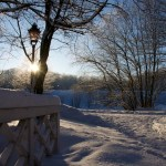 Spiel von Licht und Schatten im Schlosspark zu Ballenstedt