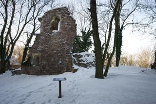 Bild: Die Ruinen der Alten Kapelle - capella vetus - auf dem Petersberg bei Halle an der Saale.