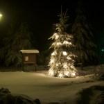 Bild: Winter 2010/2011 - Weihnachten im Landkreis Mansfeld-Südharz.