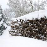 Bild: Winter 2010/2011 - Verschneiter Holzstapel.