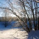 Bild: Winter 2010/2011 - Im Schlosspark zu Ballenstedt.