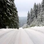 Bild: Winter 2010/2011 - Ehemaliger Grenzweg bei Schierke im Oberharz.