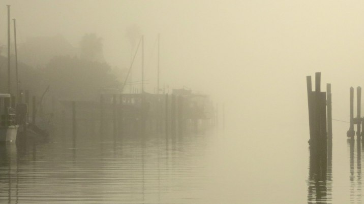 Morning fog in the marina basin.