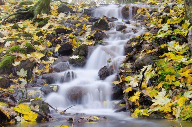 Wasserfall Dahmen