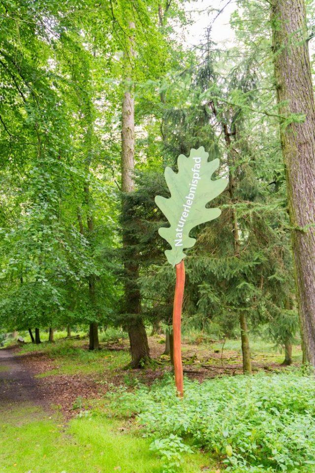 Ivenacker Eichen 4 Naturpfad