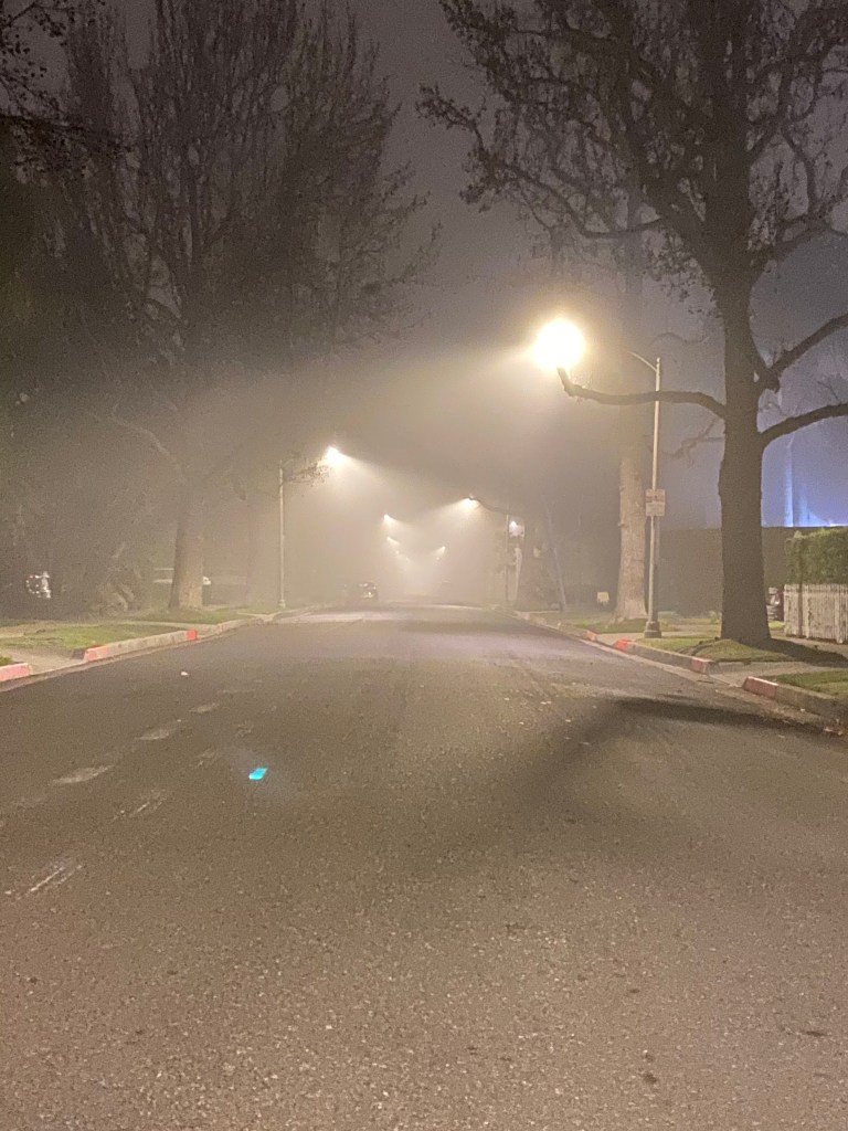 Foggy Visions - Beverly Hills, CA (1-24-2020)