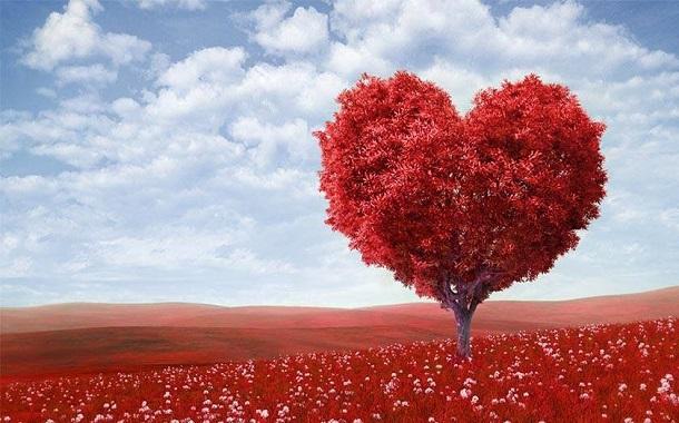 12% من المغردين الأردنيين إستخدموا وسم عيد الحب