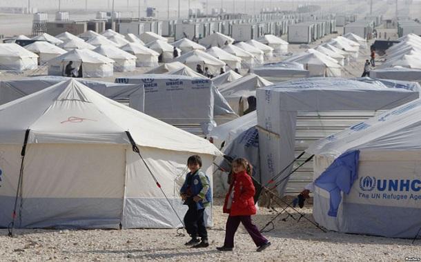 الفاخوري: الأردن وصل حد الإشباع باللاجئين