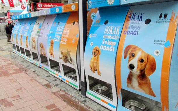 ماكينات تعمل بالمخلفات البلاستيكية والمعدنية، لتأمين الطعام والشراب لحيوانات الشوارع في تركيا