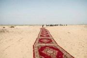 ''سجادة حمراء'' بالصحراء تثير عاصفة انتقادات بوجه وزير مصري