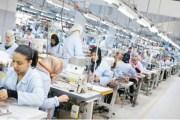 ''سوء فهم حكومي'' يعيق التصدير لأوروبا