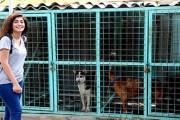 مواقع التواصل تنقذ الحيوانات في العراق