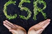 برنامج تدريبي لمبادرة المسؤولية الاجتماعية للشركات يبدأ الأحد