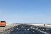 فقط في روسيا.. السماء تمطر ذهباً!