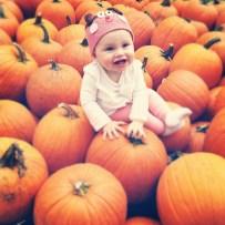 pumpkin patch em
