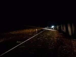 spadlý strom na cestě 1