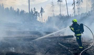 12.06.2021 Požár lesa