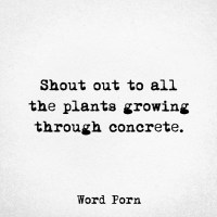 Growing through concrete