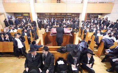 Grande soirée d'étude des Sihot du Rabbi, au Beth Haya Mouchka