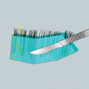 strip-extraction