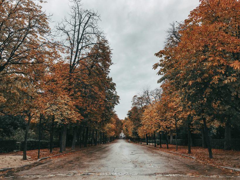 Ruta por el Parque del Retiro