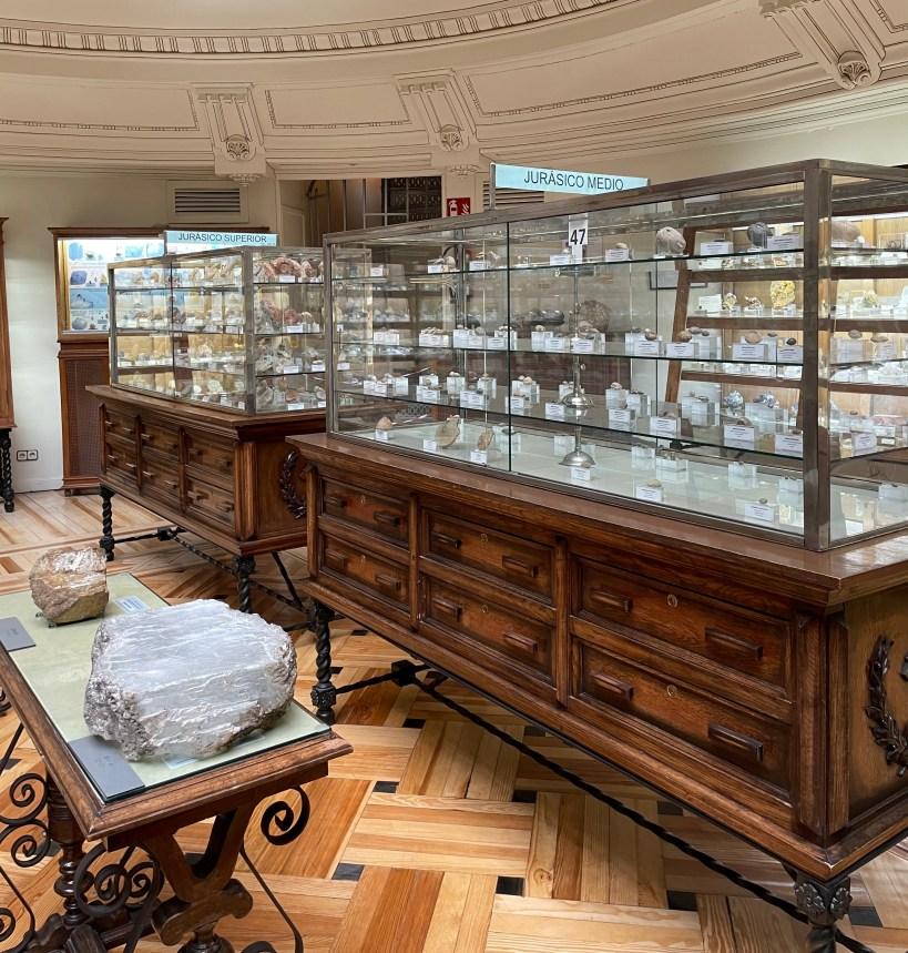 museo geominero madrid restos paleontológicos