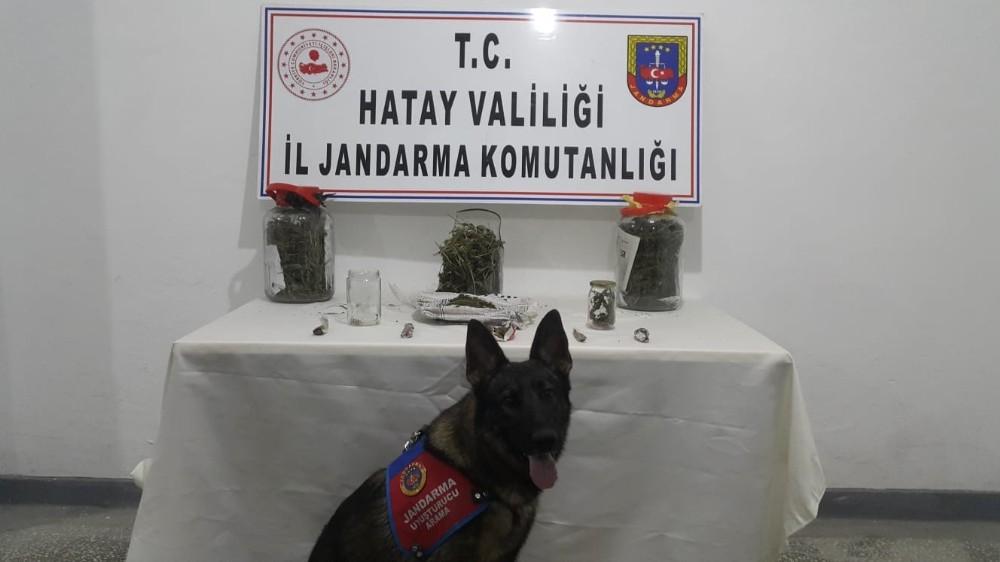Hatay'da uyuşturucu operasyonu: 1 tutuklama