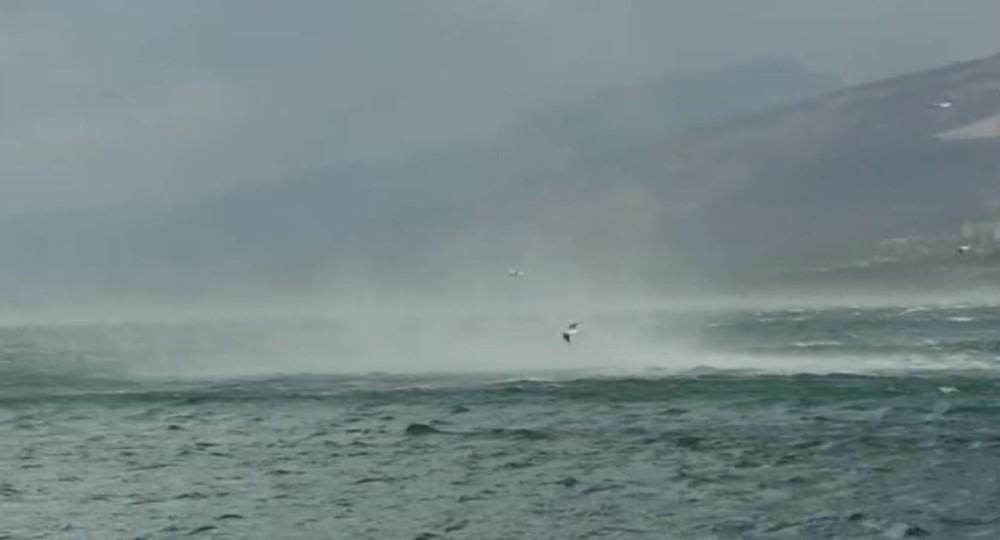 Hortum denizdeki martıları böyle savurdu