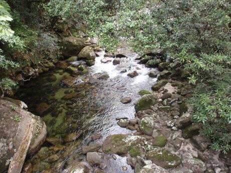 Mossman Gorge Daintree