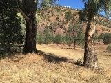 Brachina Gorge