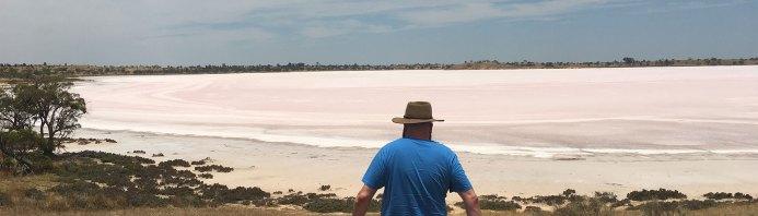 david-pink-lakes-feature